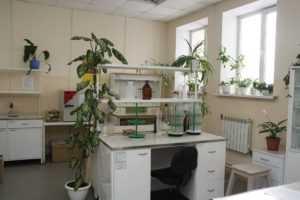 Аналитическая лаборатория